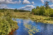McCarthy Beach is a state park in northern Minnesota