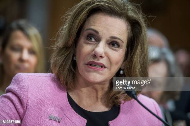 T McFarland nominee to be ambassador to Singapore attends her Senate Foreign Relations Committee confirmation hearing in Dirksen Building on July 20...
