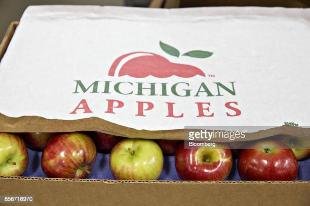 McIntosh apples sit in a box at the Jack Brown Produce Inc packing facility in Sparta Michigan US on Wednesday Sept 27 2017 Michigan growers have...