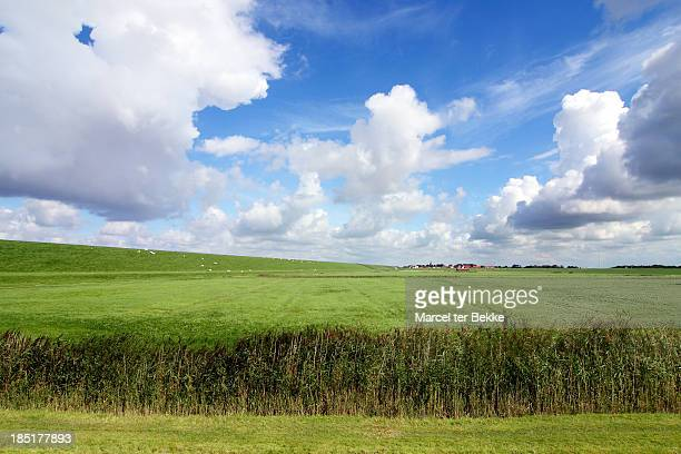 Meadow, dike & village in Holland
