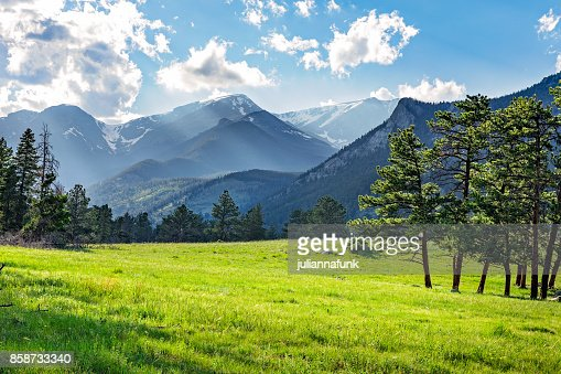 Meadow in Rocky Mountain National Park : Foto stock