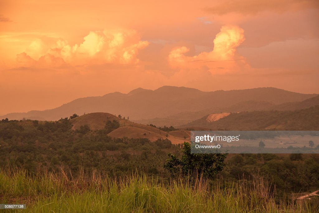 Meadow mountain. : Stock Photo