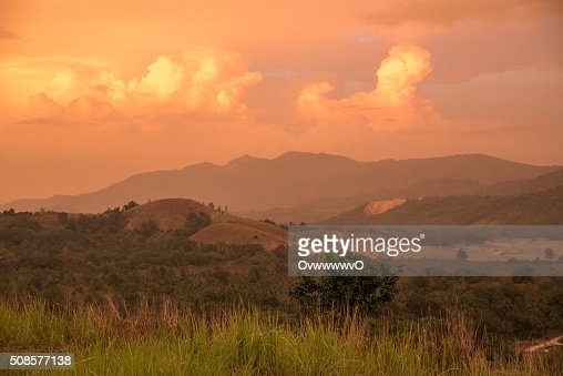 Meadow mountain. : Stockfoto