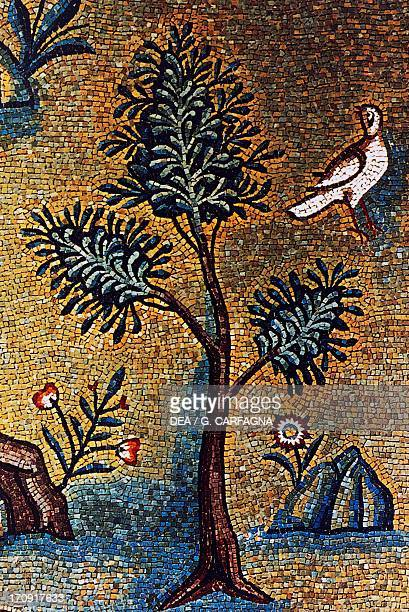 Meadow with flowers and tree detail of the mosaic from the apse Basilica of St Apollinaris in Classe Ravenna EmiliaRomagna Italy