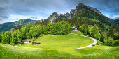 Beautiful view of meadow near Jenner mount in Berchtesgaden National Park with cows, Upper Bavarian Alps, Germany, Europe.