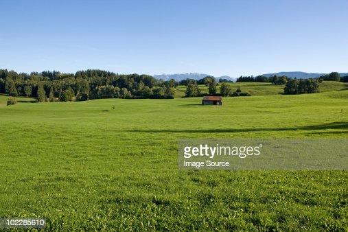 Meadows in bavaria