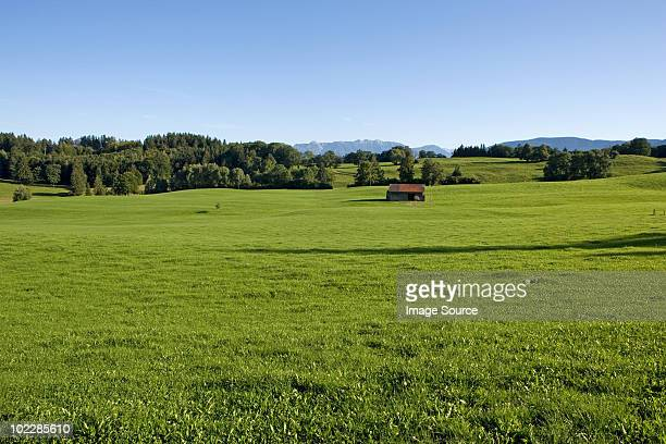 Meadows in bavaria