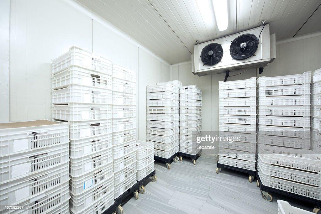 30 Celcius armazenamento de carne : Foto de stock