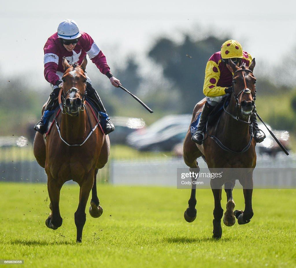 Fairyhouse Races