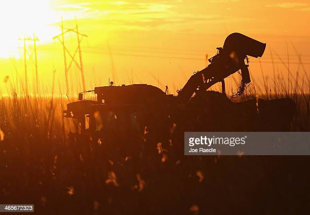 A mechanicalharvester harvests sugar cane in the fields on January 28 2014 in Clewiston Florida The United States House and Senate are reported to...