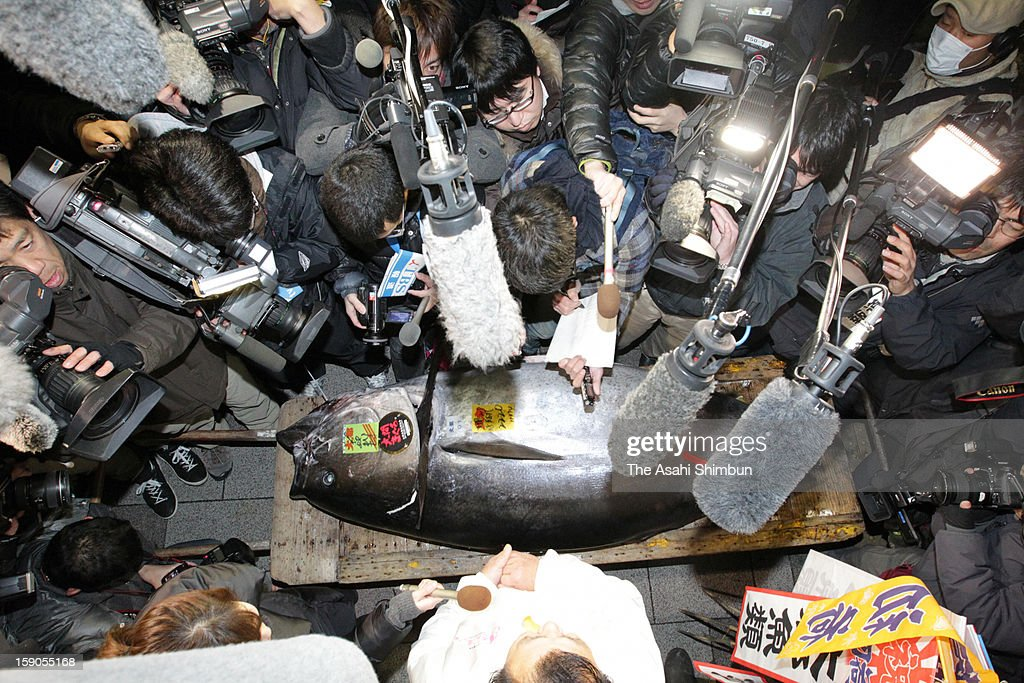 Media reporters, photographers and videographers surround the 222-kilogram bluefin tuna, that was auctioned at 155.4 million Japanese yen (approximately 1.8 million U.S. Dollars) at the opening day of Tsukiji Wholesale Fish Market on January 5, 2013 in Tokyo, Japan. The price was as triple as last year's 56.5 million yen.