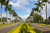 Median below palms, North Shore, Oahu