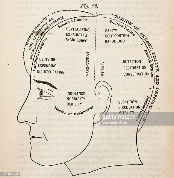 A medical engraving from 'The People's Common Sense Medical Adviser' illustrates a phrenology chart 1881