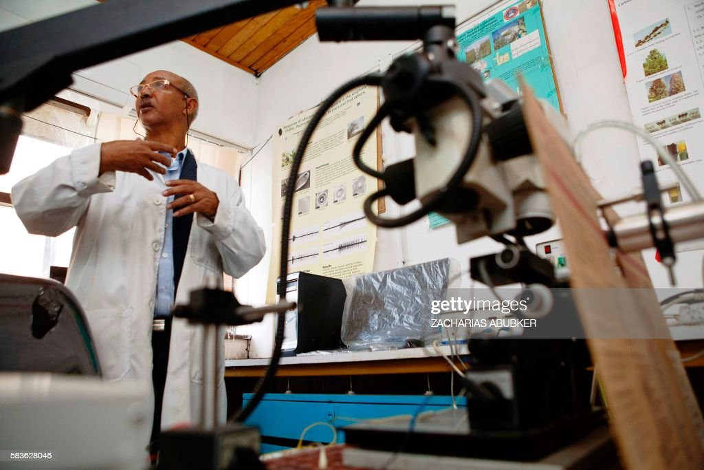 Medical entomologist and vector biologist at the department of Zoological Sciences of Addis Ababa University Dr Habte Tekie speaks at his laboratory...