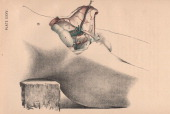A medical illustration from 'Illustrations of Dissections' shows an autopsy of the lower abdomen 1882