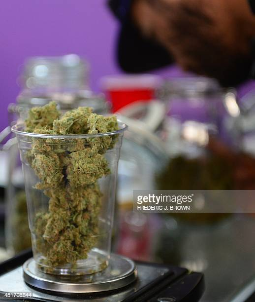 Medical marijuana is placed on a scale as cardcarrying medical marijuana patients attend Los Angeles' firstever cannabis farmer's market at the West...