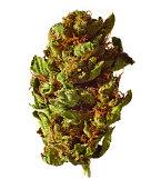 Medical marijuana on white