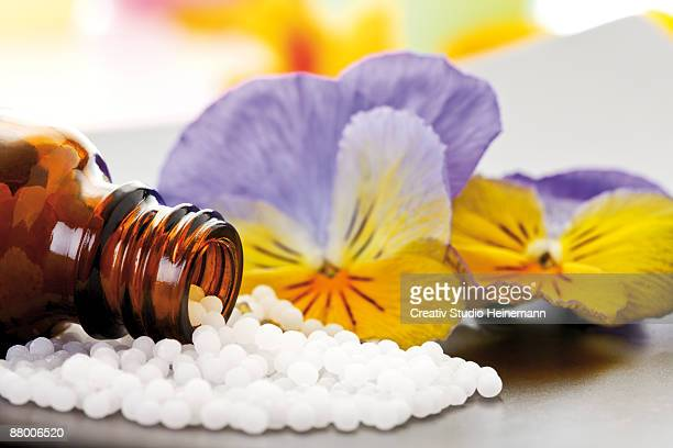Pill bottle with pills in front of horned violet (Viola cornuta), close-up