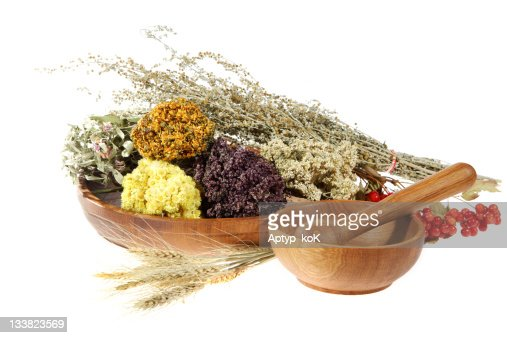 Medicinal herbs on the white background : Stock Photo