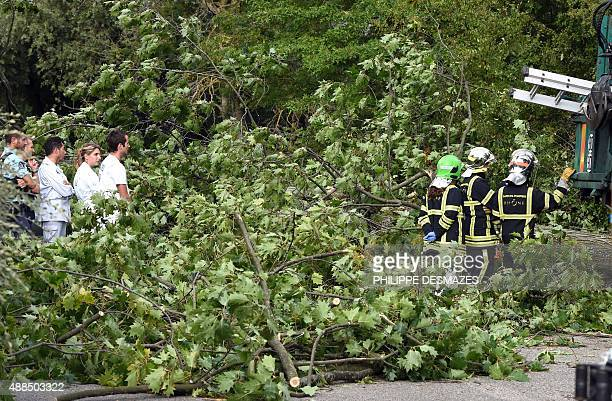 Medics stand by watching firefighers at the scene after a downed trees that killed a man in his car during strong winds on September 16 2015 in...