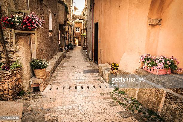 Medieval street alley with flowers and plants