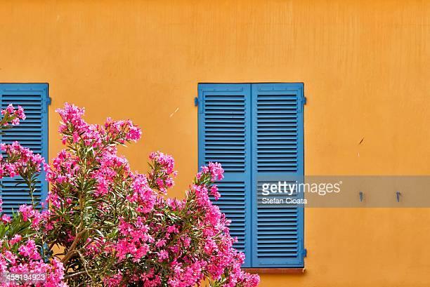 Mediteraneean window | Corsica, France
