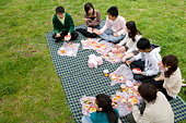 Medium group of young people enjoying lunch on lawn, high angle view, Japan
