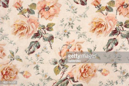 Medley Rose Close Up
