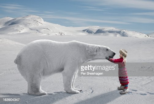 Meeting a Polar Bear