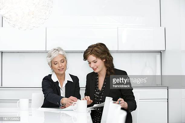Meeting with mature business woman