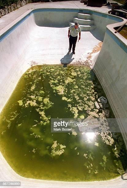 MEFishPool083195MB––##Anaheim%%–Orange County Vector Control Technician John Parsons walked into the backyard pool at an abandoned home in Anaheim to...
