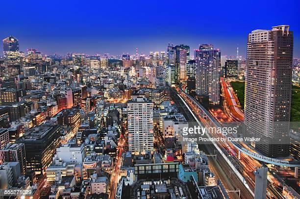 Mega City of Tokyo