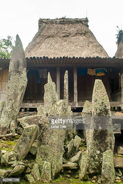 A megalithic structure in Bena a traditional village of the Ngada people on Flores Indonesia