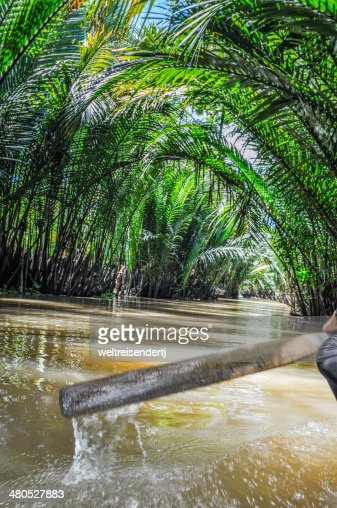 Mekong Delta, An Giang, Vietnam : Stock Photo