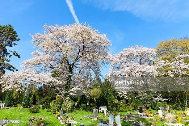 Melaten cemitério, de Colónia, Alemanha