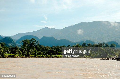 Melinau Paku River - Mulu National Park - Borneo : Stock Photo