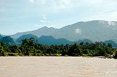 Melinau Paku River - Mulu National Park - Borneo