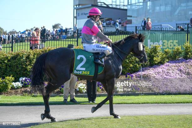 Melissa Julius returns to the mounting yard on Leishman after winning the Ballan District Health Care 0 58 Handicap at Geelong Racecourse on November...