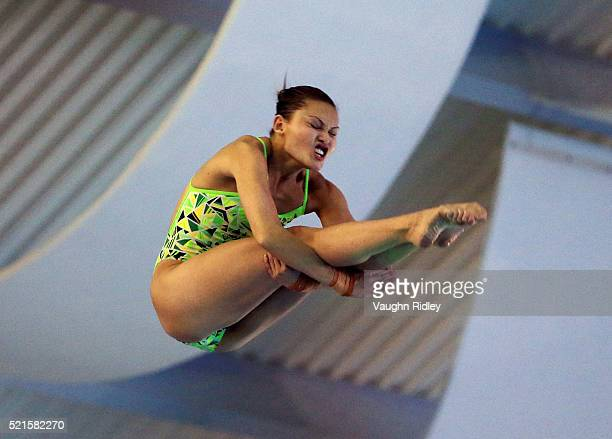 Melissa Wu of Australia competes in the Women's 10m Semifinals during Day Two of the FINA/NVC Diving World Series 2016 at the Windsor International...