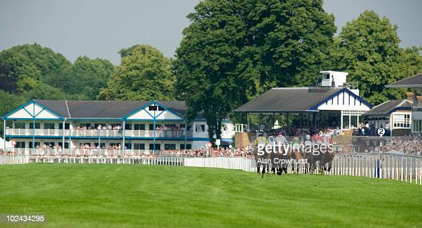 Mellifera ridden by jockey Adam Kirby challenge at the two furlong marker before winning the Get Live Football Stats At totesportcom Fillies'...