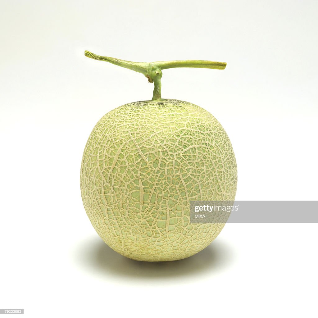 Melon : Stock Photo