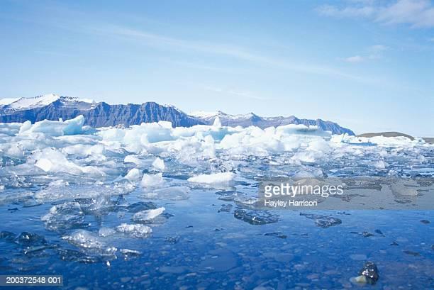 Melting sea ice