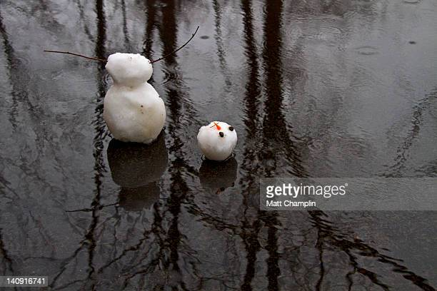Melting Snowman in water