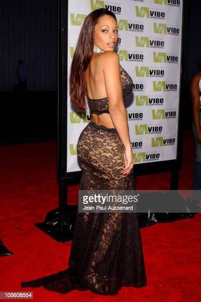 Melyssa Ford during 2004 Vibe Awards Arrivals at Barker Hanger in Santa Monica California United States