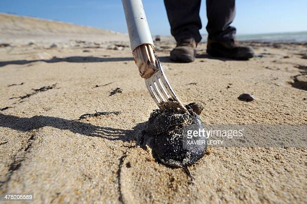 A member of a team from the technical services of the French town of SaintClementdesBaleines picks up tar balls with a fork attached to a tube on the...