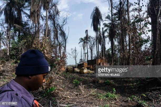 A member of NNS Pathfinder of the Nigerian Navy forces walks past a destroyed illegal oil refinery on April 19 2017 in the Niger Delta region near...
