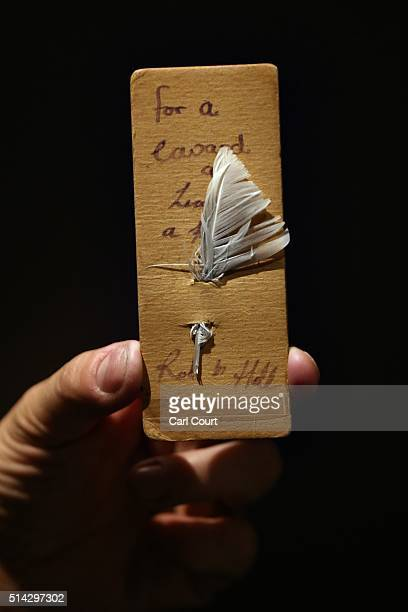 A member of staff holds a white feather pinned to cardboard with the message 'for a coward and a liar a feather' given to conscientious objectors by...