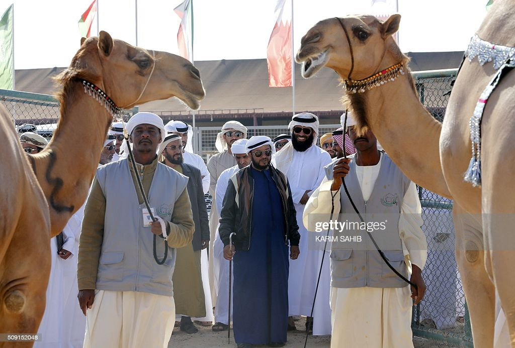 Member of the al-Nahyan ruling family, president's representative and Chairman of the Emirates Heritage Club, Sheikh Sultan bin Zayed al-Nahyan (C) looks at camels as he arrives to attend the Sheikh Sultan Bin Zayed al-Nahyan heritage festival, held at the Sweihan racecourse in Al-Ain on February 9, 2016. / AFP / KARIM SAHIB