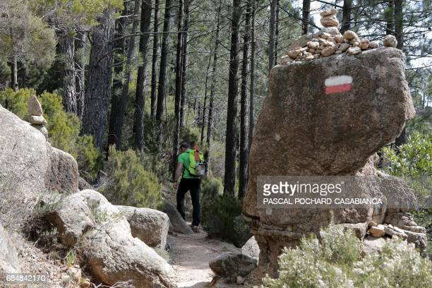 Member of the Corsica Regional Parc in charge of the GR 20 trek signing Jean Antonelli walks in the Bavella picks montains on the GR 20 on April 4...