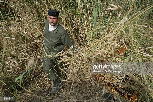 A member of the Iraqi militia searches the river and sets fire to reeds March 23 2003 in Baghdad Iraq They are searching for two coalition pilots...